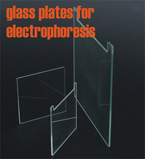 Glass Plate Sale